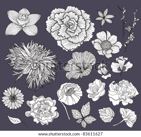 Set of flowers. Floral elements. - stock vector