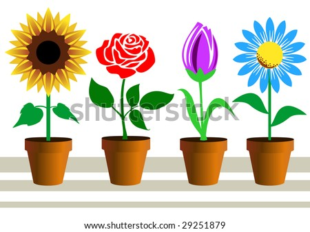 Set of flowers in pots on white