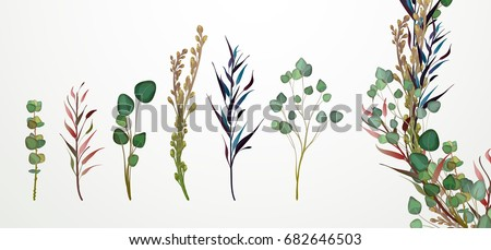 Set of flowers, leaves and branches, Imitation of watercolor, isolated on white. Sketched wreath, floral and herbs garland. Handdrawn Vector Watercolour style, nature illustration.