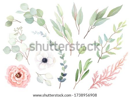 Set of flowers rose and white anemone, leaves and branches in vintage watercolor style. Vector floral illustration for design wedding card, invitation, greeting card, wrapping paper. Stockfoto ©