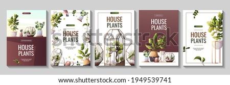 Set of flyers for houseplants store, greenhouse, florarium, home garden, gardening, plant lover. Vector illustration for poster, banner, flyer, advertising, commercial, promo.  Stock photo ©