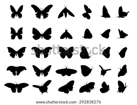set of flying butterfly