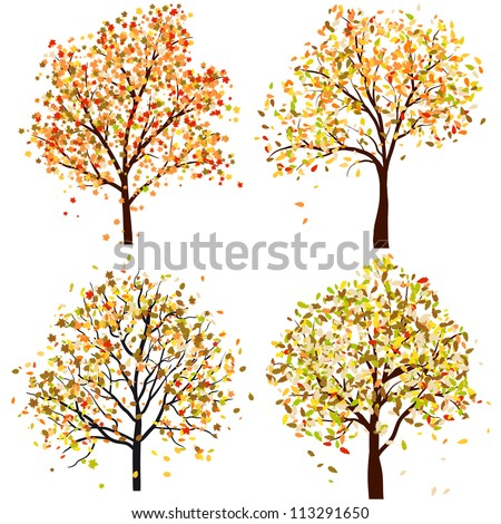 set of four autumn tree vector
