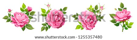 set of four beautiful flower of