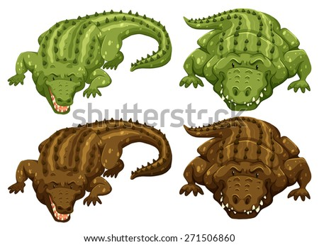 set of four crocodiles in green