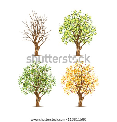 Set of four trees in different seasons, vector illustration, eps10, transparent shadow.
