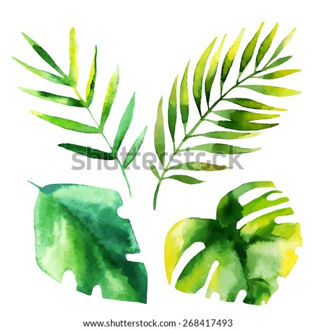 set of four tropical leaves