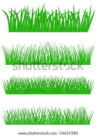 Set of fresh summer grass