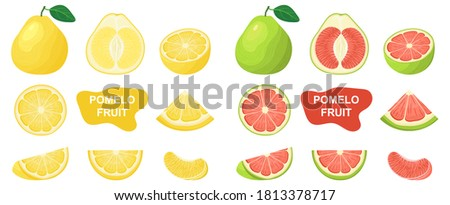 Set of fresh whole, half, cut slice pomelo fruits isolated on white background. Summer fruits for healthy lifestyle. Organic fruit. Cartoon style. Vector illustration for any design. Foto stock ©