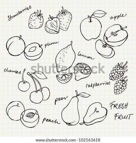Set of Fruit doodle drawings vector