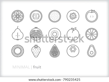 Set of 15 fruit icons of healthy produce including apple, pear, peach, berries, citrus, melon