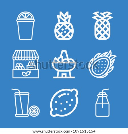 set of 9 fruit outline icons