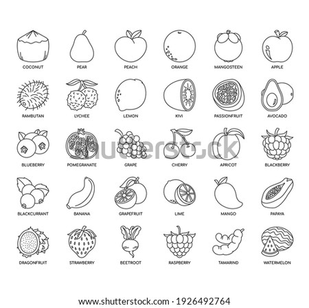 Set of fruit thin line and pixel perfect icons for any web and app project.