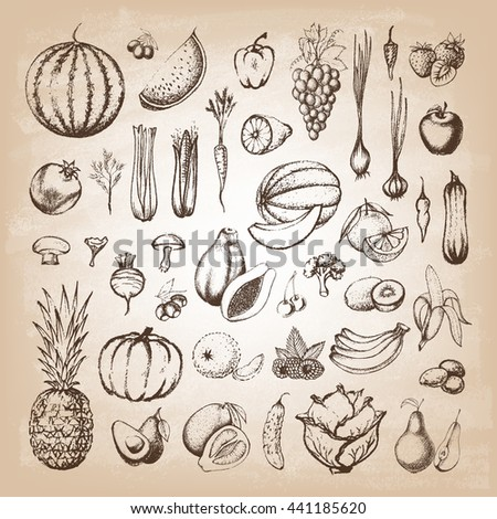 Set of fruits and collection of hand-drawn vegetables. Vector illustration. #441185620