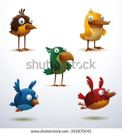 set of funny birds  vector