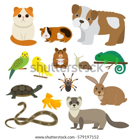 set of funny pet character in a