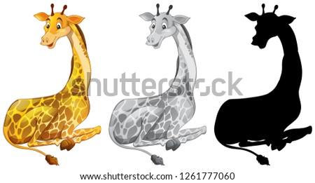 Set of giraffe character illustration