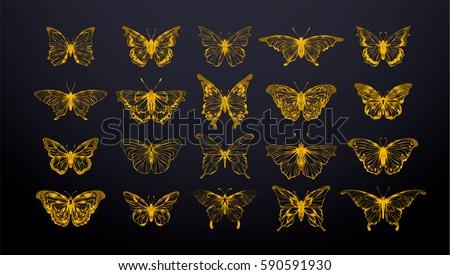set of gold butterflies  ink