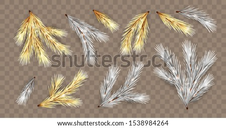 Set of golden and silver Christmas tree branches. Vector fir branches. Decorative design elements