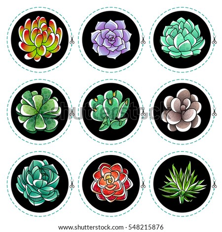 Set of gradient colored succulents and artichokes leaves and petals. Stickers with succulents. Vector illustration