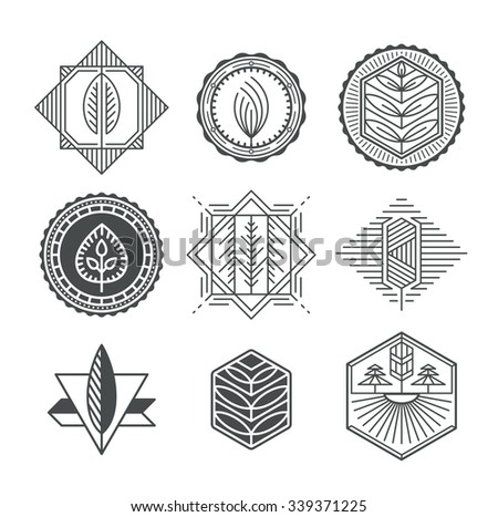 Set of graphical natural labels, mono line and monochromatic design collection of eco signs, logos and symbols.