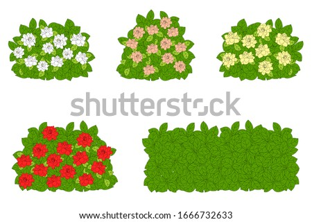 set of green bushes with