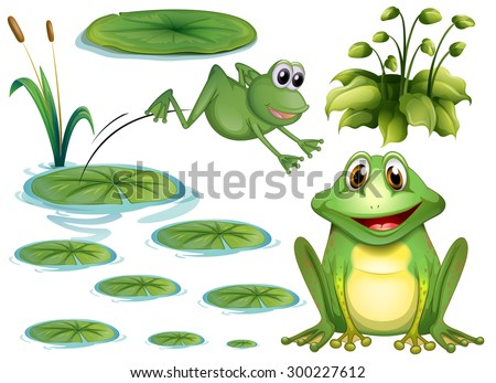 stock-vector-set-of-green-frog-and-water-lily