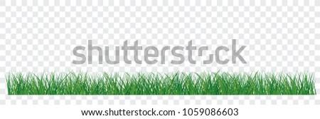 set of green grass border