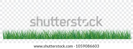 set of green grass border