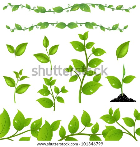 Set Of Green Leaves And Sprouts, Isolated On White Background, Vector Illustration