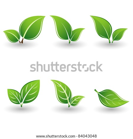 set of green leaves element