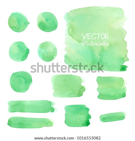Set of Green watercolor brush strokes. Vector brush stroke