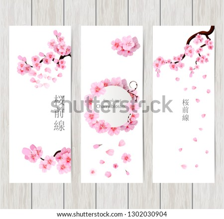 Set of greeting and invitation card with cherry blossom  Spring composition with sakura. Vector illustration