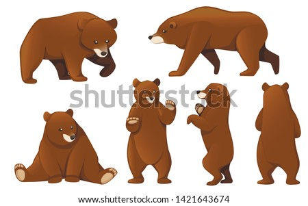 set of grizzly bears north