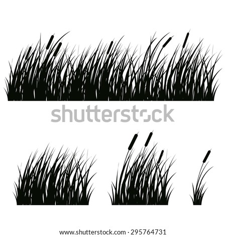 set of hand drawn beach grass