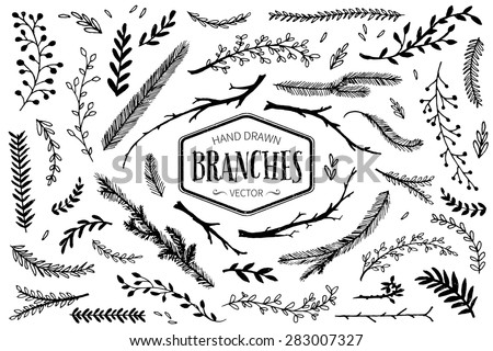 set of hand drawn branches ink