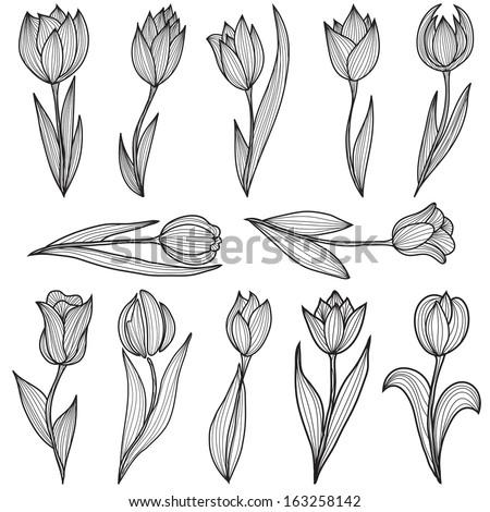 set of 12 hand drawn decorative