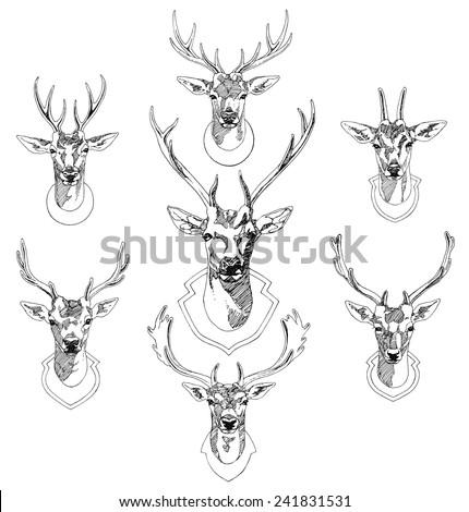 set of hand drawn deer heads