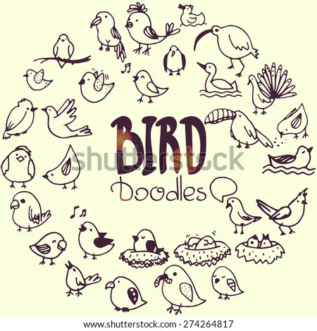 set of hand drawn doodle birds