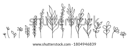 Set of hand-drawn floral elements: plants, branches, leaves, buds, sprouts. Vector illustration in doodle style on white background Foto stock ©