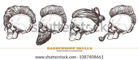 set of hand drawn human skull