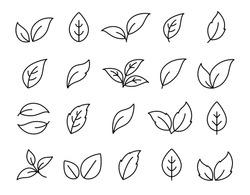 set of hand drawn linear black leaf icons