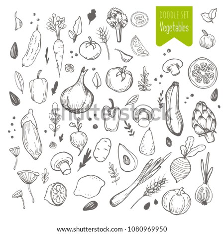 Set of hand drawn vegetable. Sketch of tomato, cucumber, carrot, broccoli, potato, eggplant, mushrooms, onion, beet, radish, pepper. #1080969950