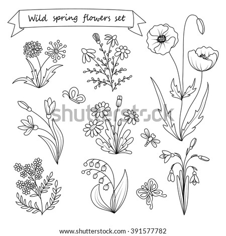 Wildflower tattoo coloring pages for Wildflower coloring pages