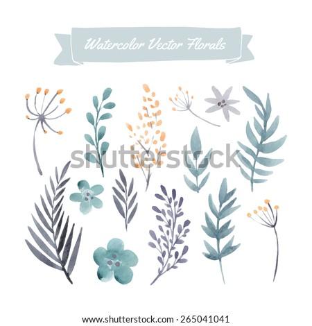 set of handpainted watercolor