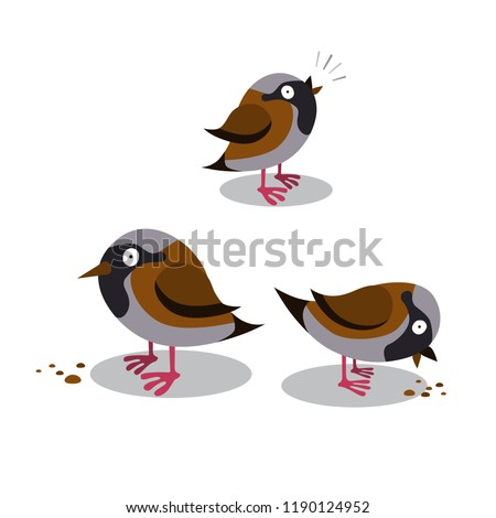 Set of happy cute sparrows which tweeting and pecking grain