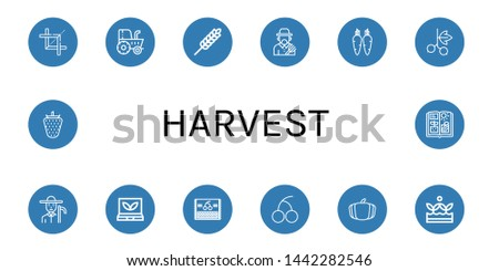 Set of harvest icons such as Crop, Tractor, Wheat, Farmer, Carrot, Blackcurrant, Smart greenhouse, Cherry, Pumpkin, Crops, Strawberry, Agriculture , harvest
