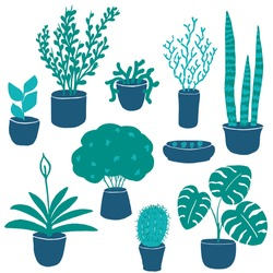 Set of houseplants in flowerpots. Handdrawn cute indoor decorative plants in blue and green colors isolated on white. Design elements such as monstera, sanseveria, lithops, cactus and other. Clip art