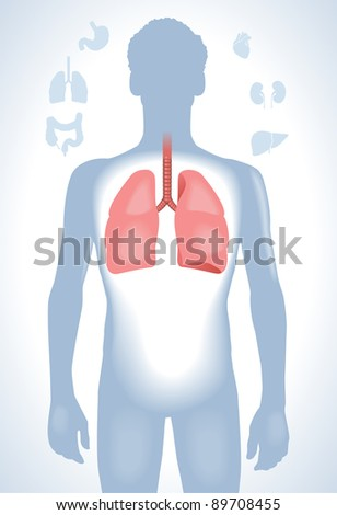 Real human esophagus - photo#23