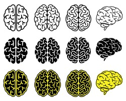 Set of human brains. Vector illustration.